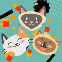 BOUNCY BOOM CAT