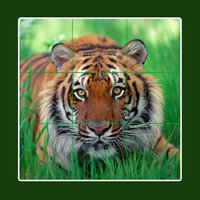 Animal tile puzzle - Ultimate edition with elephant, lion, tiger, horse, zebra, rabbit, rodent, squirrel and fish