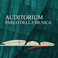 Auditorium P.d.M. Roma