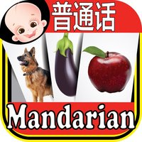 Kids Chinese & English Flash Cards ABC