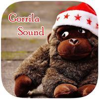 Gorilla Monkey Sounds