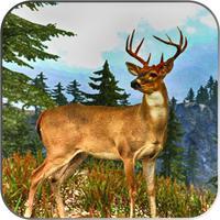 Viggle Hunting Gameboy: Fight List Wild Target 20