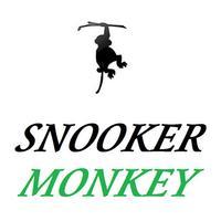 SNOOKER MONKEY