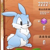 奔跑吧兔子2016