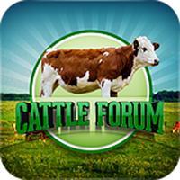Cattle Forum
