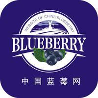 中国蓝莓网