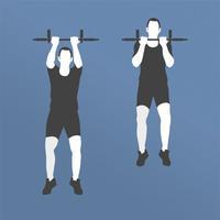 Pull Ups training & exercises
