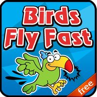 Birds Fly Fast - Free Game for Kids