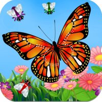 Butterfly Catch - Super Bug Catching Game