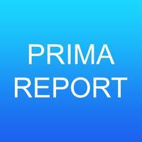 Primavera Report