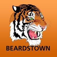 Beardstown CUSD 15