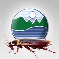 Pest World