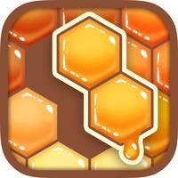 Honey Blocks -Hexa Puzzle-