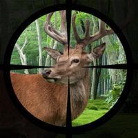 Deer Hunting Expert Shooting 2017