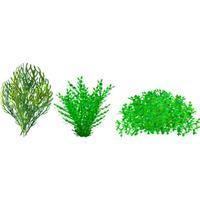 Bush - Plants