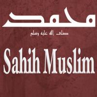 book of Oaths (Kitab Al-Iman)