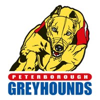 Peterborough Greyhounds