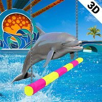 Dolphin show dolphin games 3D