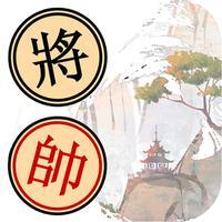 Xiangqi Puzzle