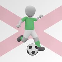 Name It! - Northern Ireland Footballers