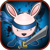 Mutant Ninja Bunny Hero- Kung Fu Air Fighting Jack Rabbit
