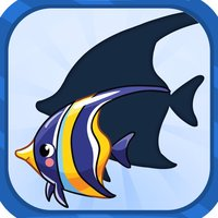 Sea Animals Shadow Puzzles Games for kids