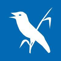 R(h)einhören - Vogelvielfalt am Oberrhein