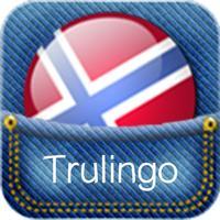 Norwegian Translator