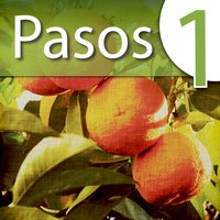 Learn Spanish Lab: Pasos 1