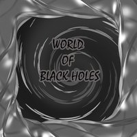 World of Black Holes