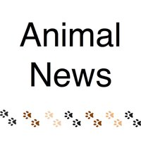 AnimalNews〜アニマルニュース〜