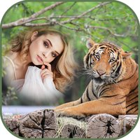 International Tiger Day Frames