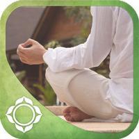 The Meditation Experience App