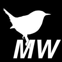 Bird Scholar Midwest