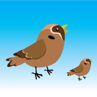 Bird Rescue Game