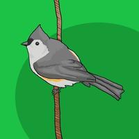 Word of the Bird