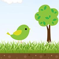 Little Flying Bird