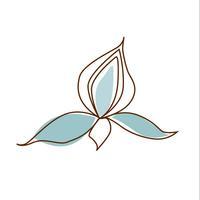 Lotus Day Spa & Salon