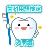 歯科用語検定・入門編