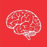 Brain Tester - For Kids