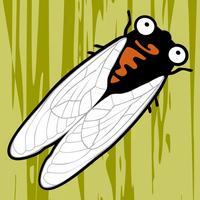 Cicada Hunt