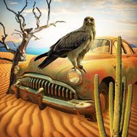 Escape Game: Lost in Desert