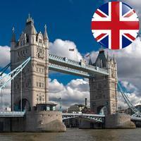In Sight - UK