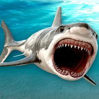 Killer Jaws Shark: Hungry Hunter HD