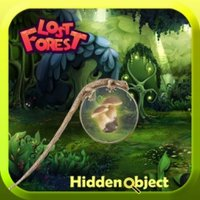 Lost Forest : Hidden Objects