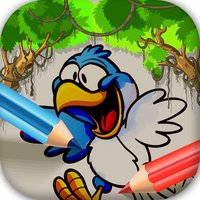 Coloring Book & Painting Birds Cartoon Picture Pro
