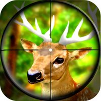 Forest Wild Animal - Hunting 3