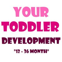 Toddler Development|your guide