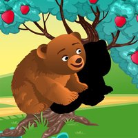 Animals of the Forest Shadow Game: Learn and Play for Children