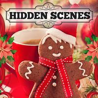 Hidden Scenes - Cozy Christmas